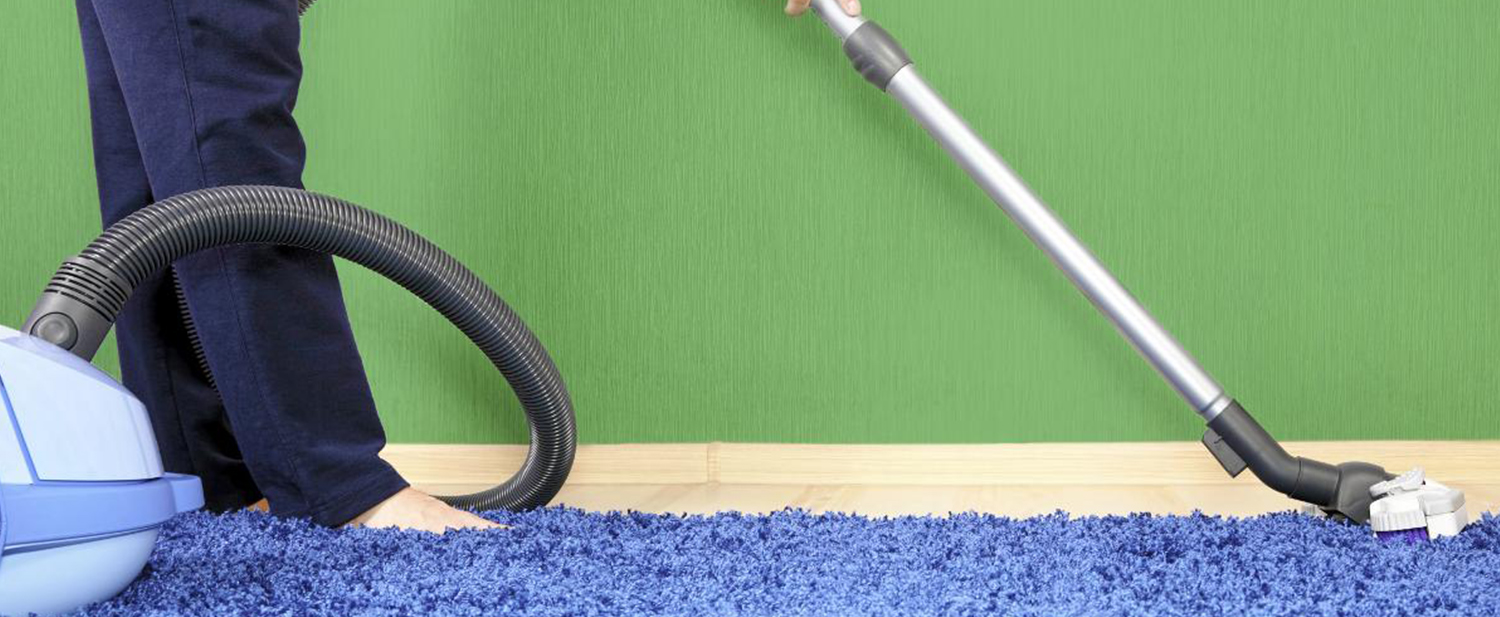 Carpet Cleaning Bronx Ny Rug Cleaning Bronx 347 732 3473
